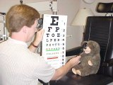 Teddy's Eye Exam